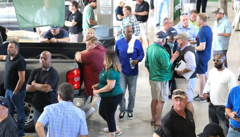 Wholesale car buyers and sellers shopping for inventory at Greenville Auto Auction
